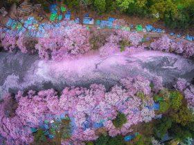 amazing-places-japan-13-57512c42af153__880