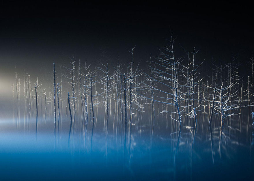 national-geographic-travel-photographer-of-the-year-contest-2016-53-572c45ecad466__880